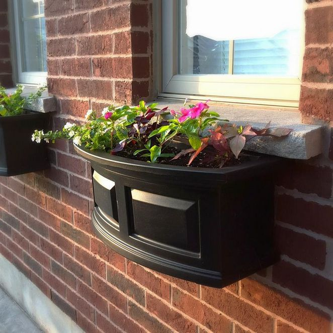 15+ Un-Answered Problems With Window Boxes Ideas Uncovered